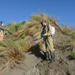 2pm-spray-dunes