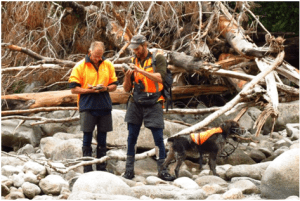 Cody Thyne, scott freeman and Jazz checking rocks for aquatic life.