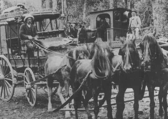 Royal Mail Coach, Ohakune Railhead, 1906. (Alexander Turnbull Library, F195754).