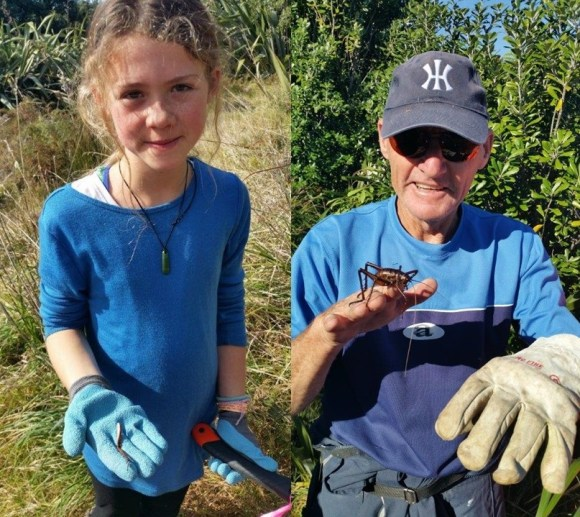 Mia with the wētā leg she found and volunteer Brian holding aMahoenui Giant Wētā. Photo: Alaine Holdom.