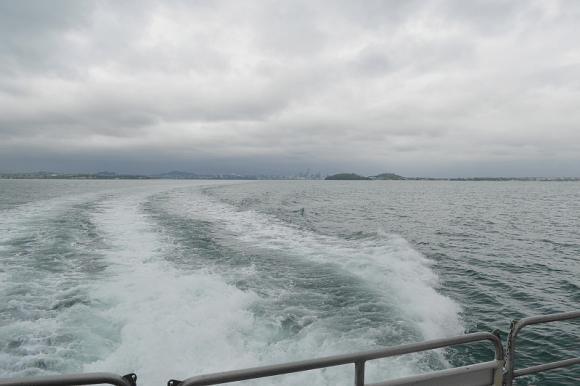 Auckland from the ferry.