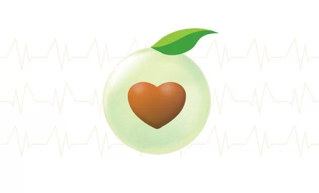 tamamlayıcı sağlık sigortası 1