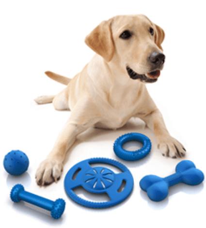 buying dog product online