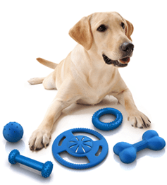 Controlling Aggression in your Pet Dogs