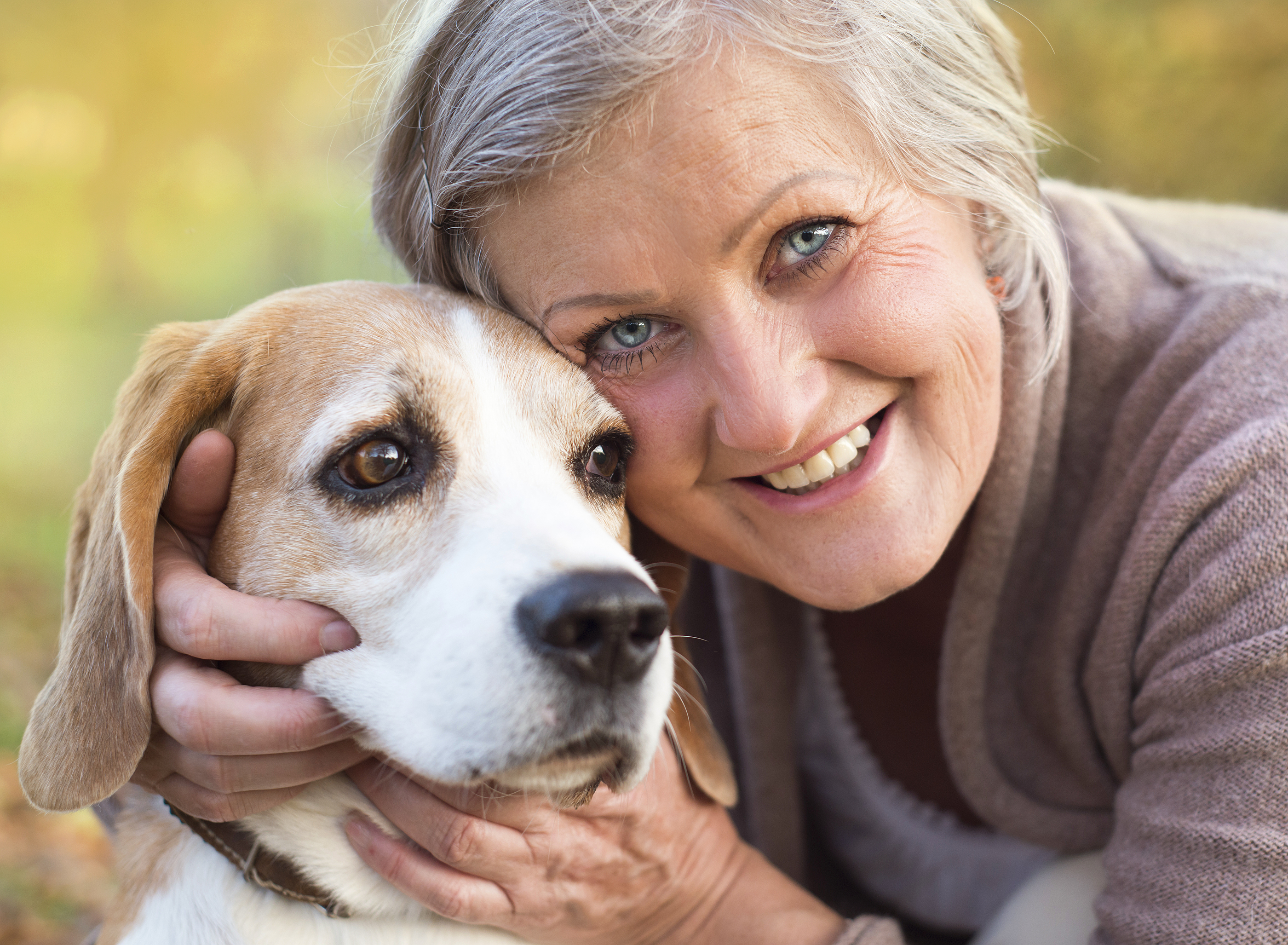 How is dog care becoming easier?