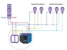 Schéma de câblage du ZMNHBD1 de Qubino dans une installation avec neutre