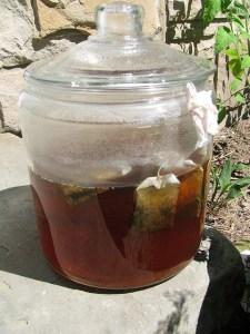 Brewing Iced Tea in the Sun