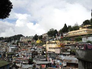 Darjeeling Tea is not from urban areas.