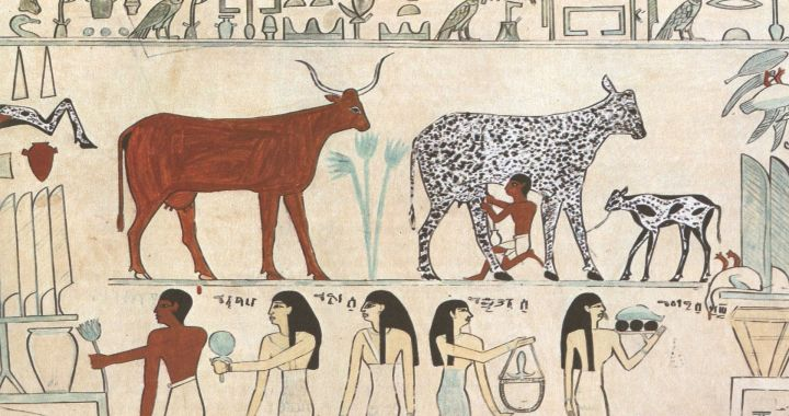 How changes in our prehistoric ancestors' diet may have determined how our languages sound today
