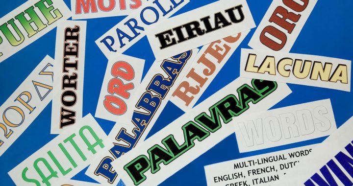 De basis van meertaligheid