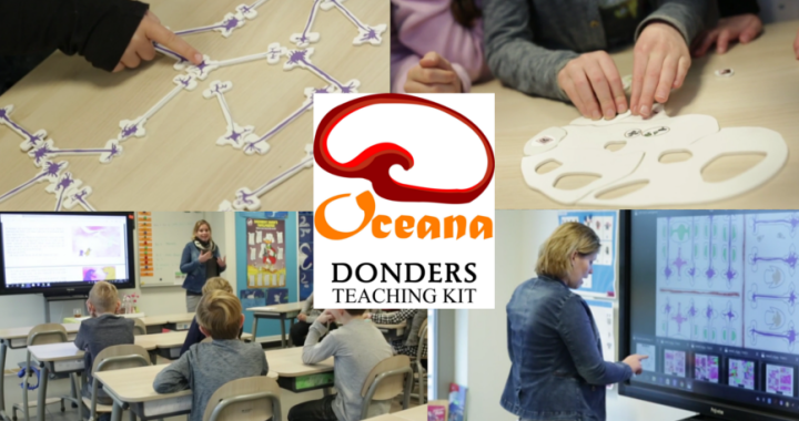 Geef les over hersenwetenschap met de Donders Teaching Kit