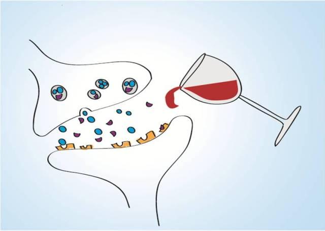 Je synaps aan de drank. Proost! Afbeelding door Lieneke.