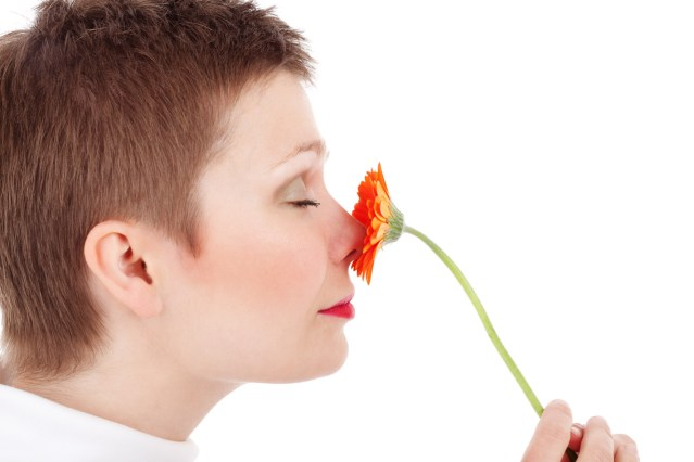 The nose knows: Smell memories