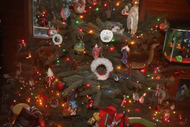 Christmastree2013sopretty