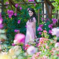 intre trandafiri