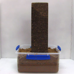 Brick standing on its end in a container of sand.