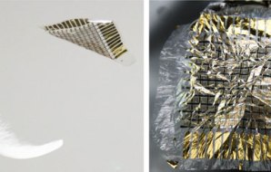 Left panel shows feather and electronic skin falling through the air. The right panel shows an example of an electronic skin: gold foil on a clear plastic film.