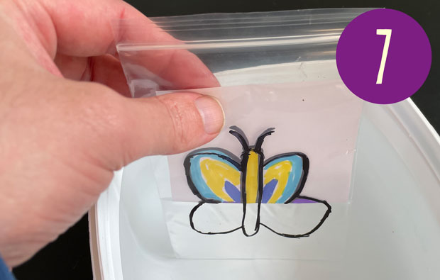 lowering the plastic bag with butterfly drawing into water.