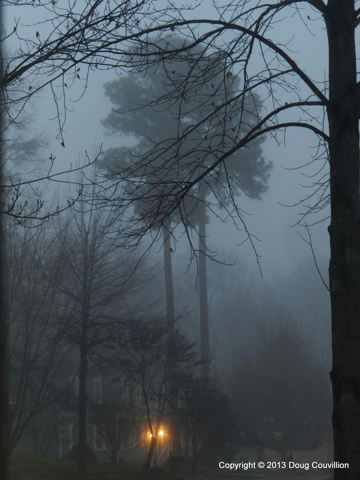 photograph of a suburban street in the early morning fog