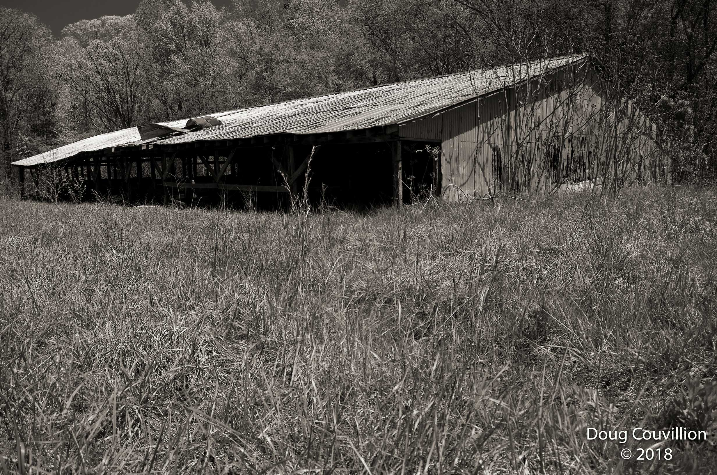 black and white photograph of the milking parlor at Amelia Wildlife Management Area in Amelia County, Virginia by Doug Couvillion