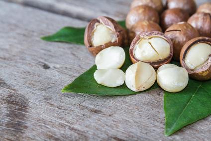 """Résultat de recherche d'images pour """"propriété huile macadamia"""""""