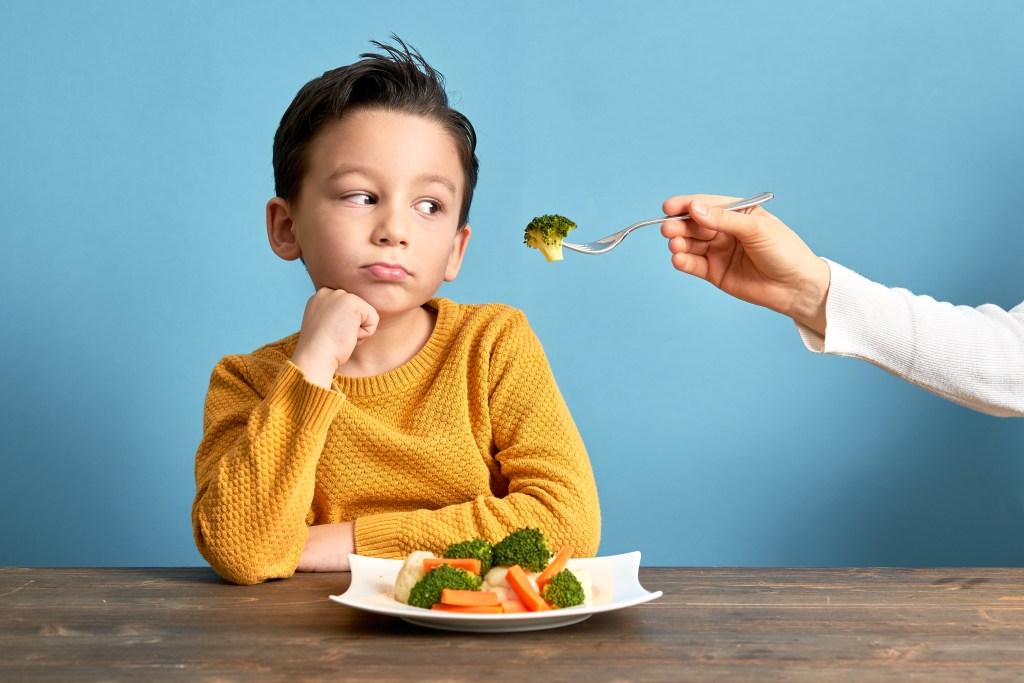 Meu filho não quer comer, e agora?