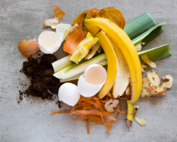 Home composting with food scraps