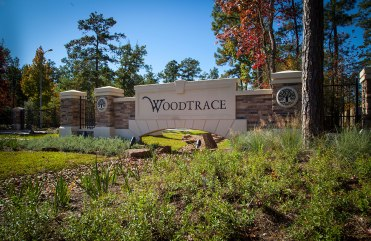 Woodtrace-Entry-2_2X