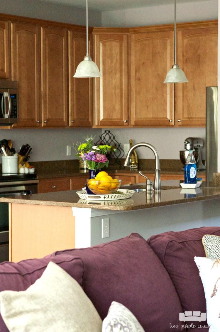 Drees-Homes-Davidson-kitchen-EK