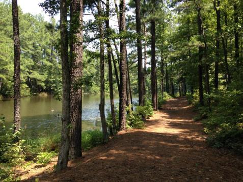 Lake@BTL_preview_maxWidth_1600_maxHeight_1600