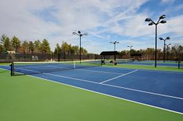 Tennis Court 2_preview_maxWidth_1600_maxHeight_1600