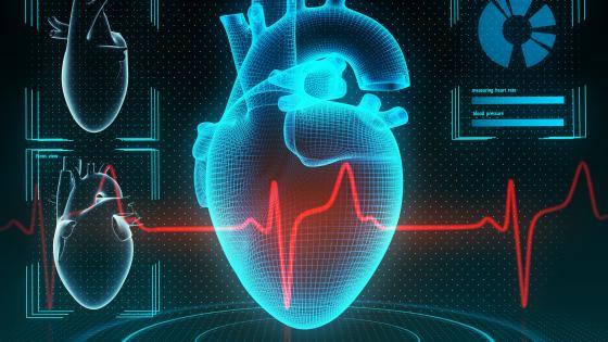 A IA Pode Ler Uma Ressonancia Magnetica Cardiaca Em 4 Segundos. Ainda Precisamos de Avaliacao Humana