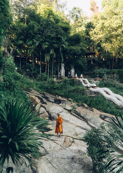 1123-ChiangMai-0012