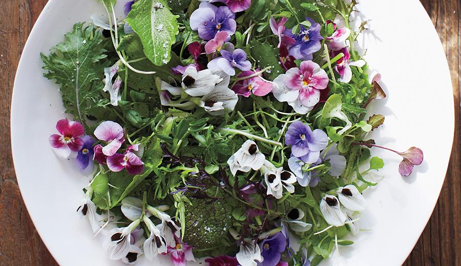 Edible Flowers Rekomendasi Untuk Kamu di Tahun Baru 2018 ini via www.marthastewart.com