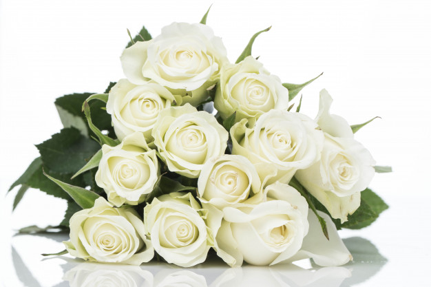 Arti warna mawar valentine white rose via freepik ala duniamasak