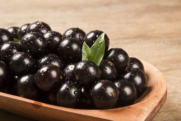 buah unik yang jarang kamu ketahui jaboticaba via permaculturenews.org ala tim duniamasak