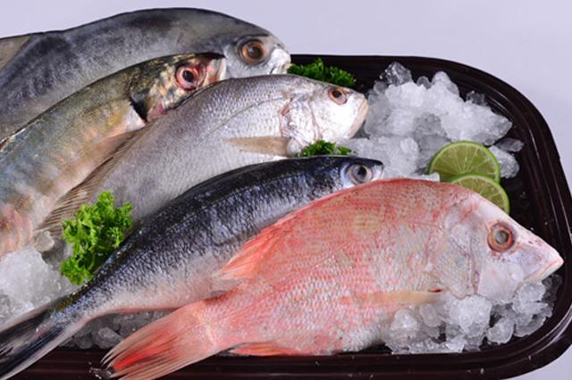 Ikan penangkal sakit mensturasi via kanalaceh.com