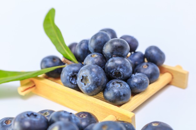 Jenis berry blueberry via freepik ala duniamasak