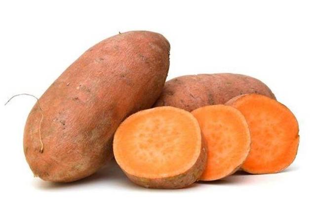 Ubi makanan bergizi via dispertan.bantenprov.go.id