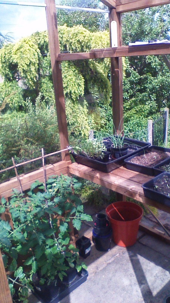 Customer Reviews Tranquillity Greenhouse