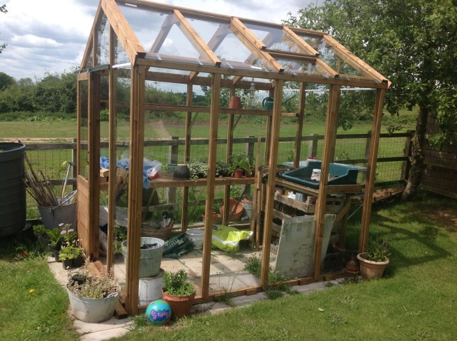 Customer Reviews Serendipity Greenhouse Dunster House