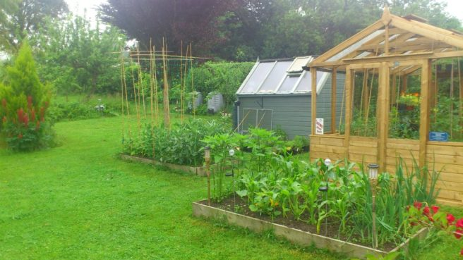 Summer clean for Greenahouses