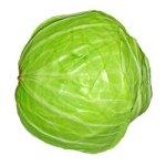 Cabbage fiber