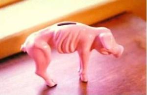 piggy_bank_on_Debt_diet