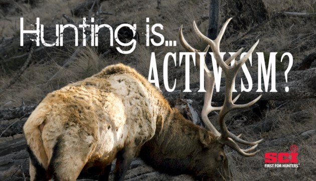 newsletter-12-16-hunting-is-activ