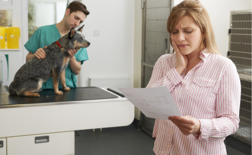 Pricing in Veterinary Practices