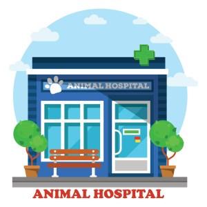 Starting veterinary practice - Location