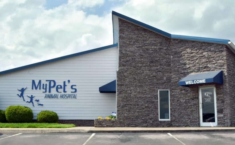 New Veterinary Clinic – Lease Retail Space or Own a Free-standing Facility?