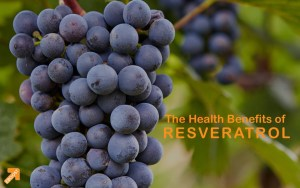 0112 Resveratrol Benefits EBOOST - Resveratrol Benefits EBOOST