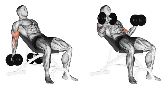 1592c - 5 Exercises to Set Your Arms on Fire